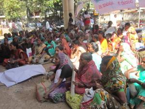 sharadha article photo